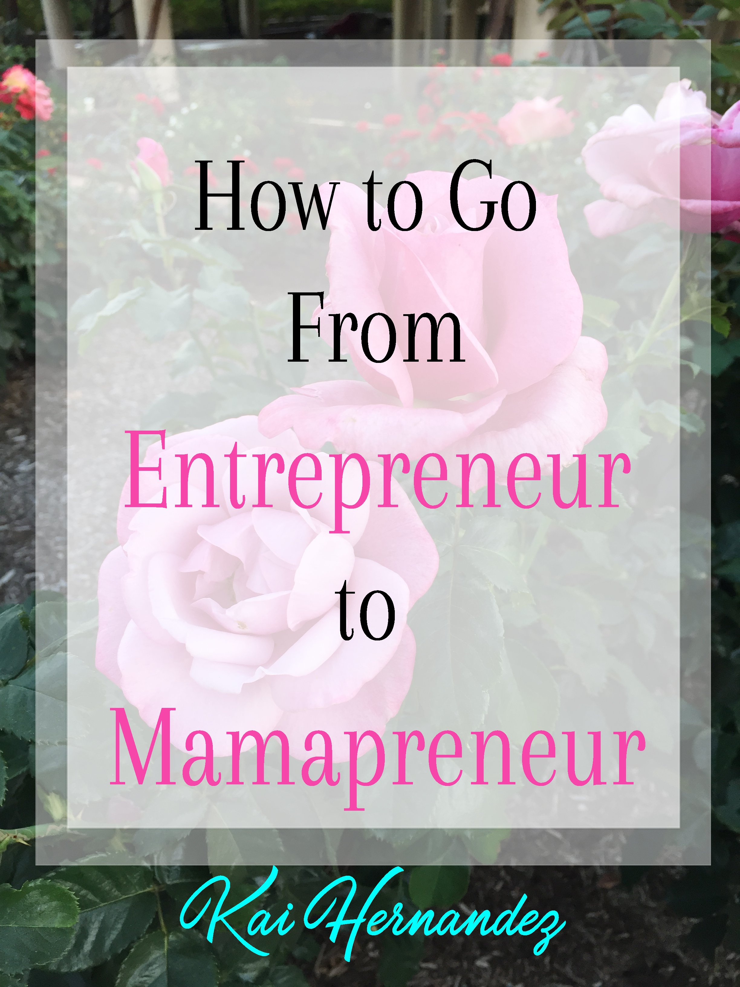 How to Go from Entrepreneur to Mamapreneur